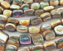 abalone beads #03