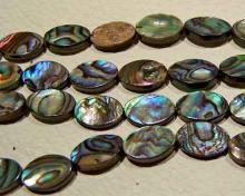 abalone bead #033