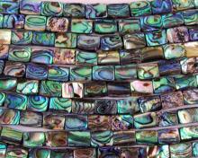 abalone bead #022